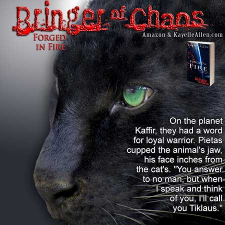 Panthers like belly rubs #SciFi #SpaceOpera #MFRWhooks